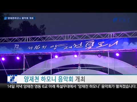 시원한 여름 음악 축제 '양재천 하모니' 개최