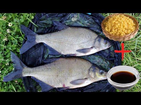 наживка для рыбы на реке белой