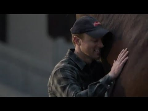 Budweiser Clydesdale Commercial – Super Bowl 2013