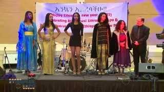 Ethiopian Expo 2014 Beauty Pageant Winners!!