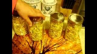 Dehydrating Onions -or- How To Make Your Home Smell Like White Castle