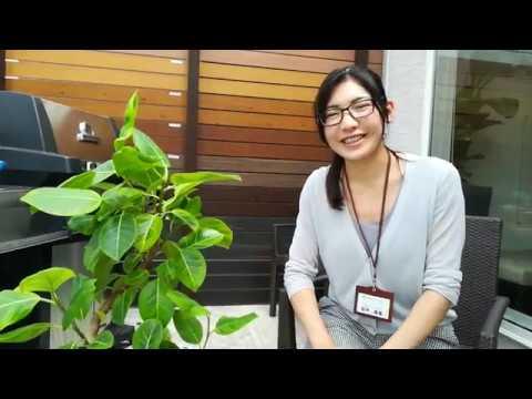 出雲市 外構 エクステリア 庭 リビングガーデン 観葉植物 フィカス・アルテシーマ