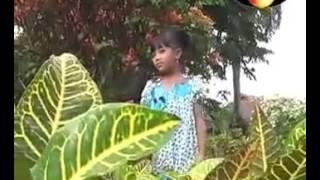 Lagu Anak Anak Jawa Kodok Ngorek