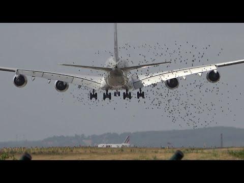 100 planes in 55min SUNRISE Paris CDG 🇫🇷 Close Up Plane Spotting, airplanes identification RUSH HOUR