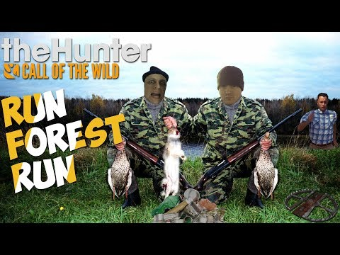 theHunter: Call of the Wild - Беги, Лес, Беги/PUBG