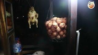 ASLII !!! AYAM DIGANTUNG CAMPUR BAKMI HOLIWOOD | YOGYAKARTA STREET FOOD #BikinNgiler