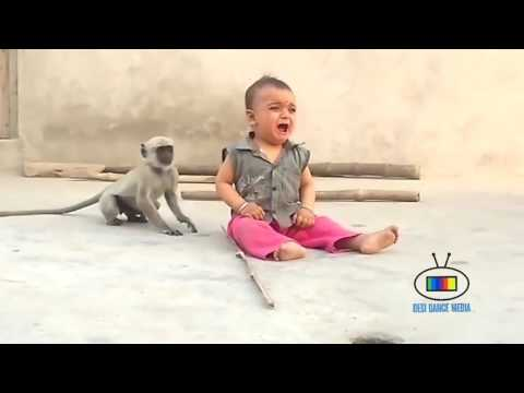 Video Funny Monkey and Child  Naughty MONKEY musti With Small Kidz soo Funny download in MP3, 3GP, MP4, WEBM, AVI, FLV January 2017