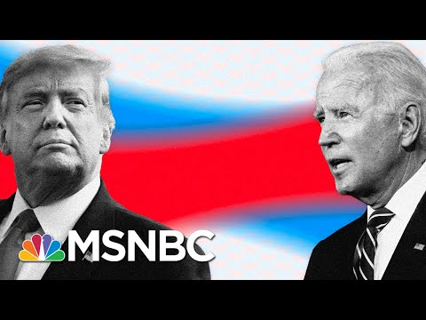 Crashing In Polls, Trump Pushes False Claims And Gets Fact-Checked On Live TV   MSNBC