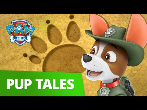 PAW Patrol | Pups Save Big Paw | Rescue Episode | PAW Patrol Official & Friends!