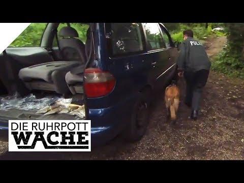 Ungewöhnliche Entdeckung: Auto voll Rauschmittel gestohlen   Die Ruhrpottwache   SAT.1 TV