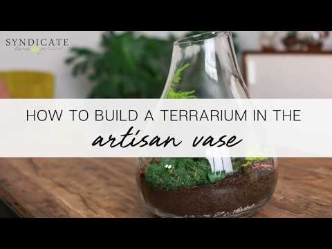 How to Build an Artisan Terrarium