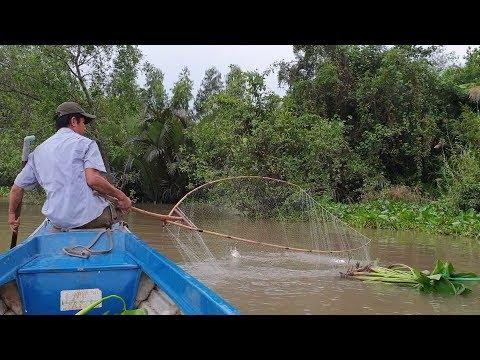 Phá vỡ mọi kỷ lục. Đêm vớt cá kinh hoàng (hơn 45kg cá) : Tập full video | Săn bắt SÓC TRĂNG | - Thời lượng: 2:02:02.
