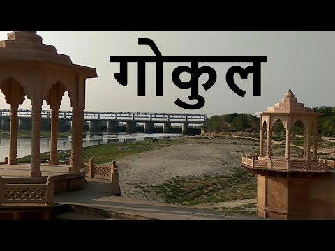 Video Gokul Vlog download in MP3, 3GP, MP4, WEBM, AVI, FLV January 2017