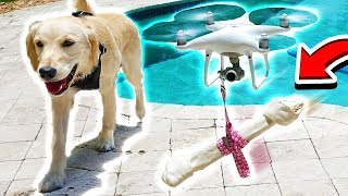 Video FLYING MY PUPPY WITH A DRONE! (MooseCraft's Puppy) MP3, 3GP, MP4, WEBM, AVI, FLV Maret 2019