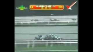 RACE 5 FAST FORWARD 10/14/2014