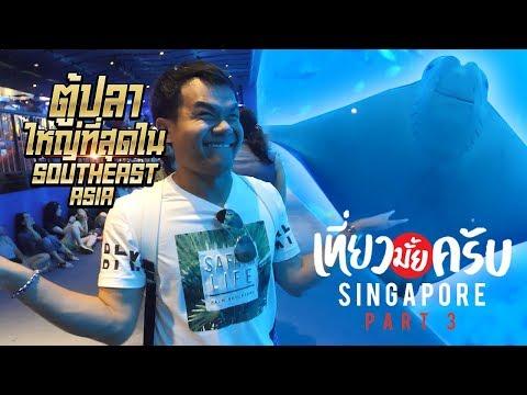 เที่ยวมั้ยครับ EP.10 ไปดูตู้ปลายักษ์ที่ใหญ่ที่สุดใน Southeast Asia ที่สิงคโปร์(Part 3/3)
