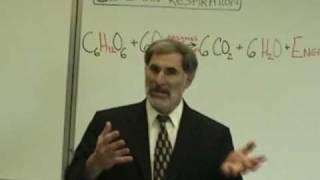 Professor Fink Explains CELLULAR RESPIRATION (Part 1); ATP, NAD