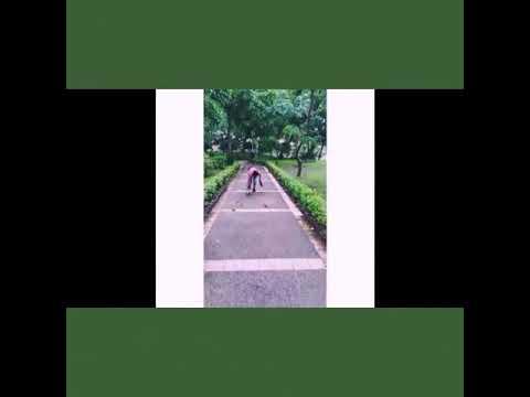 Video Alagaan ang Kalikasan (Group 4 presentation) download in MP3, 3GP, MP4, WEBM, AVI, FLV January 2017