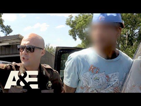 Live PD: Five Car Hit and Run (Season 3)   A&E