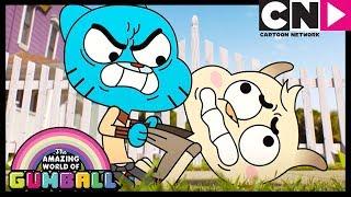 Video Gumball | The Watterson Family 2.0 | Cartoon Network MP3, 3GP, MP4, WEBM, AVI, FLV Maret 2019
