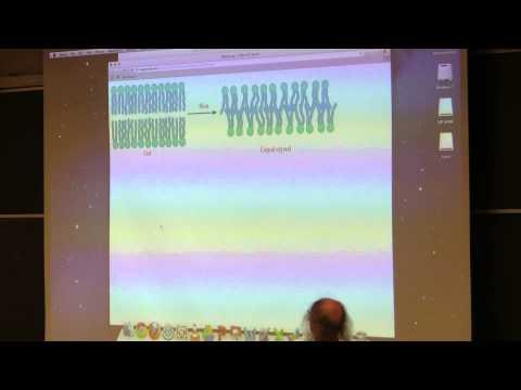 Kevin Ahern's BB 350 (Lipids & Membranes) 2014 - #12