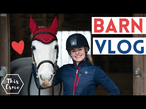 Barn Vlog - A chilled day with the Ponies AD | This Esme