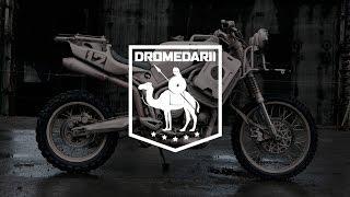 8. ICON 1000 Dromedarii