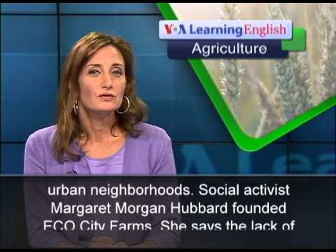 Turning Unused City Lots Into Farms