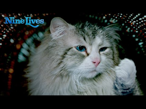 Nine Lives (2016) (TV Spot 5)