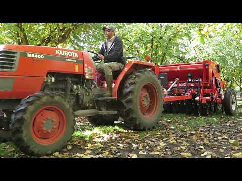 Seed drill planting cover crop