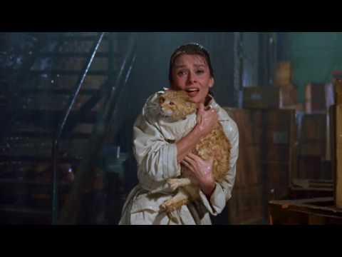 """Scena finale del film """"Colazione Da Tiffany"""" - 1961"""