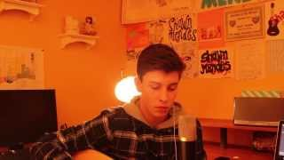 Video Say Something - Shawn Mendes (Cover) MP3, 3GP, MP4, WEBM, AVI, FLV Mei 2018