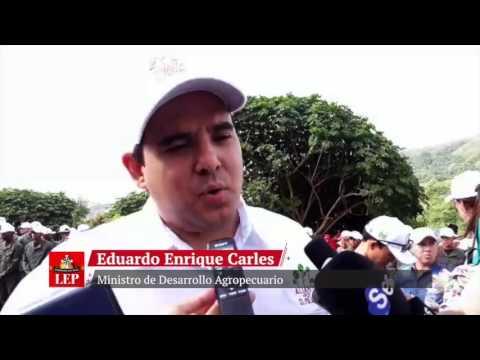 Ministro Carles anuncia lanzamiento de programa 'Panamá Exporta'