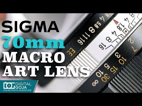 The New Sigma 70mm F/2.8 DG Macro Art Lens | First Look
