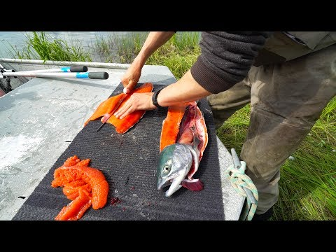 Remote Salmon Fishing In Alaska - Catch And Cook
