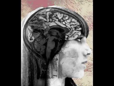 Brain Loop