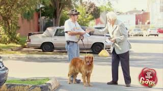 Epic Old Man - Confused Dog Owner