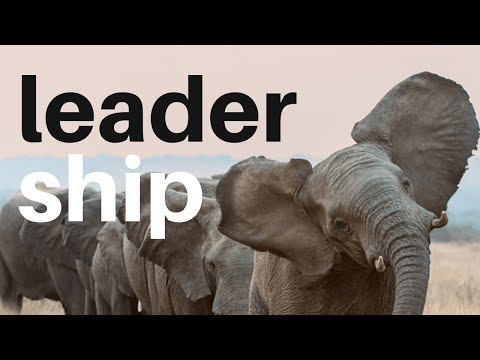 Leadership quotes - LEADERSHIP - 33 ways to become a great leader (bahá'í inspired thoughts)