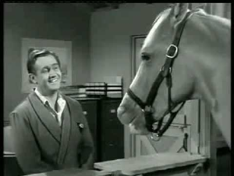 Mister Ed