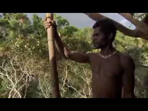 house builders - Disclaimer: I do not own the following video clip. No copyright infringement intended. All Copyright BBC © The simply amazing Korowai tribe, from the beautif...