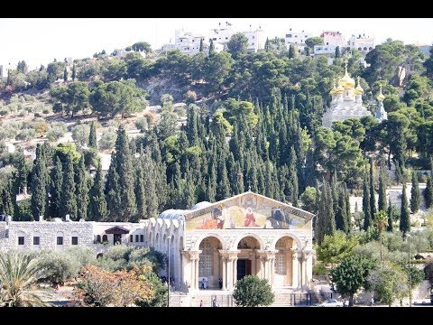 Gethsemane - Mount of Olive