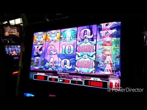 Silver Fox slot 100 FREE SPINS WITH HUGE PAYOUT!!!!!