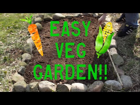 , title : 'Planting Vegetables - How to Plant a Small Vegetable Garden'