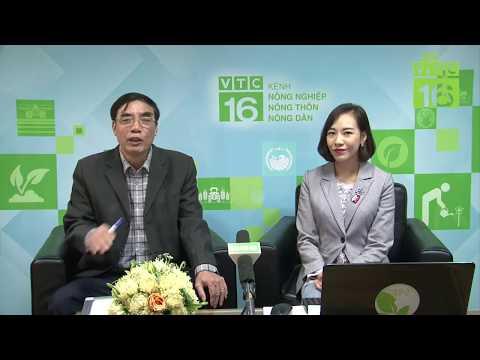 Tư vấn nông nghiệp trực tuyến, chiều 15/03/2019 (từ 13h - 16h) | VTC16 - Thời lượng: 2 giờ, 57 phút.