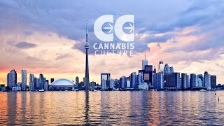 Expert Joints LIVE: The Toronto Police Takeover by Pot TV