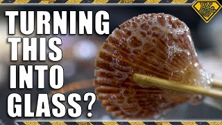 Turning Seashells Into Glass (Debunking Viral Videos)