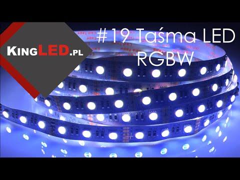 Taśma LED RGBW #19 - Poradnik od KINGLED_pl