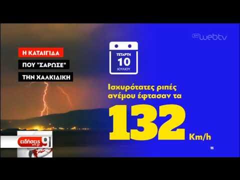 Σοκάρουν τα ποιοτικά στοιχεία της θεομηνίας στη Χαλκιδική | 31/07/2019 | ΕΡΤ