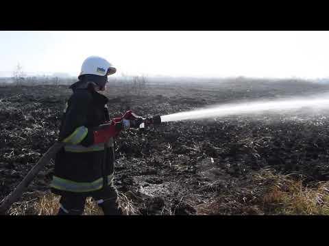 На Рівненщині рятувальникb продовжують гасити пожежі в екосистемах [ВІДЕО]