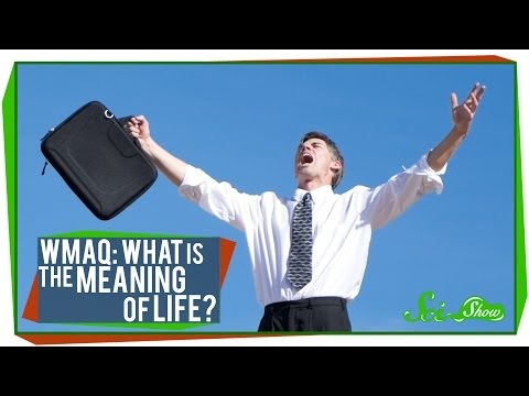 "What - People ask Google everything under the sun. One of the most commonly searched questions in the world is ""What Is the Meaning of Life?"" Let SciShow explain. Watch more of the World's..."